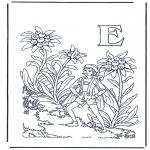 Litt av hvert - Alphabet E