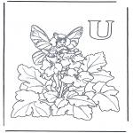 Litt av hvert - Alphabet U