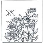 Litt av hvert - Alphabet X
