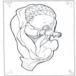 Temaer - Baby 1