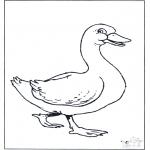 Småbarn - Baby goose