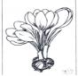 Bloemen beterschap