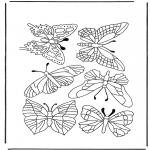 Dyr - Butterflies 1
