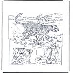 Dyr - Cheetah 1