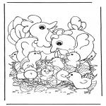 Temaer - Chicken with eggs