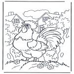 Dyr - Cock 1