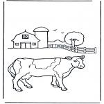 Dyr - Cow on farm