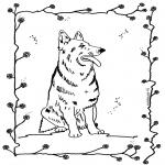 Dyr - Dog 4