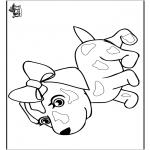 Dyr - Dog 8