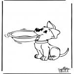 Dyr - Dog