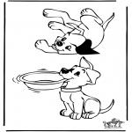 Dyr - Dogs 3