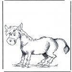 Dyr - Donkey