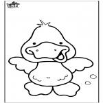 Dyr - Duck 6