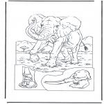 Dyr - Elephant 1