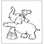 Dyr - Elephant in circus