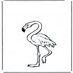 Dyr - Flamingo