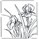 Litt av hvert - Flowers 1