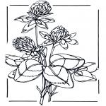 Litt av hvert - Flowers 2