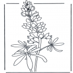 Litt av hvert - Flowers 4
