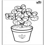 Litt av hvert - Flowers 6
