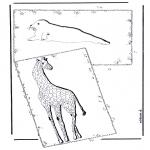 Dyr - Giraffe and sea lion