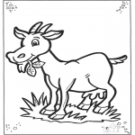 Dyr - Goat 2