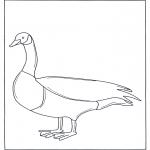 Dyr - Goose