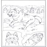 Dyr - Gray Wolf