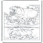 Dyr - Hippo 1