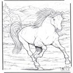 Dyr - Horse 4