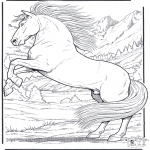 Dyr - Horse 5