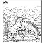 Dyr - Horse 6