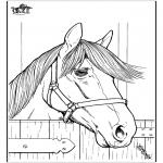 Dyr - Horse 7