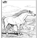 Dyr - Horse 9