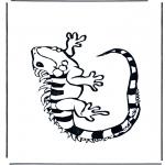 Dyr - Iguana