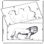 Dyr - Kamel and lion