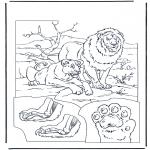 Dyr - Lions 1