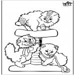 Dyr - Little cats