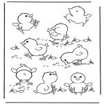 Dyr - Little chicks 2