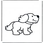 Småbarn - Little dog