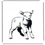 Dyr - Little lamb 2