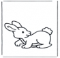 Little rabbit 2