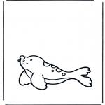 Småbarn - Little seal
