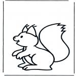 Småbarn - Little squirrel