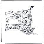 Dyr - Lynx