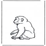 Dyr - Monkey 2