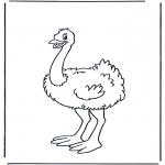 Dyr - Ostrich 1
