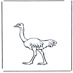 Dyr - Ostrich 2