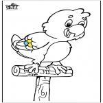 Dyr - Parrot 5