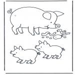 Dyr - Pig
